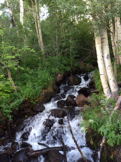 One of the many beautiful waterfalls you can experience while on a tour with Tour Estes Park.